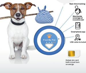 Is It Possible To Install Gps Tracker In Dogs